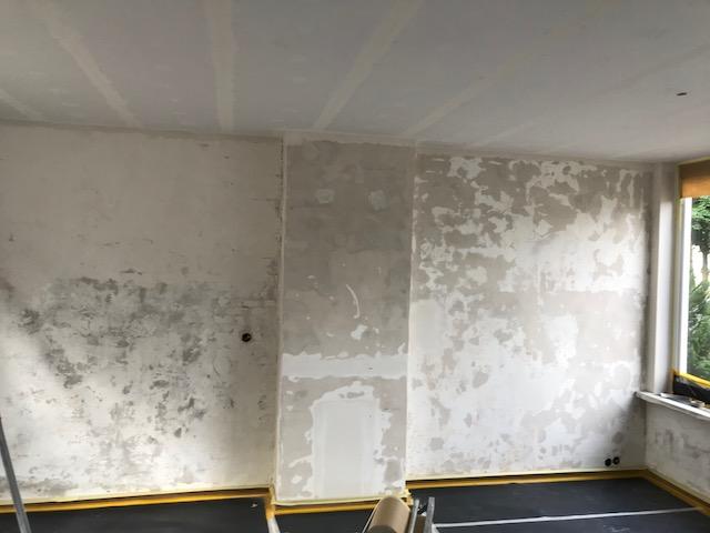 Glad pleisterwerk wanden en plafonds
